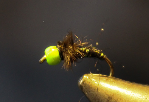 Montage de mouche : La Green Ball Nymph
