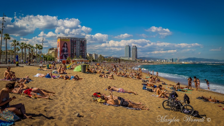 Barcelone : Plages