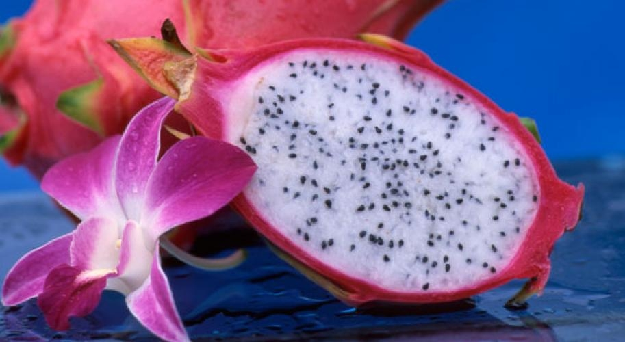 dragon-fruit-stockfood-main