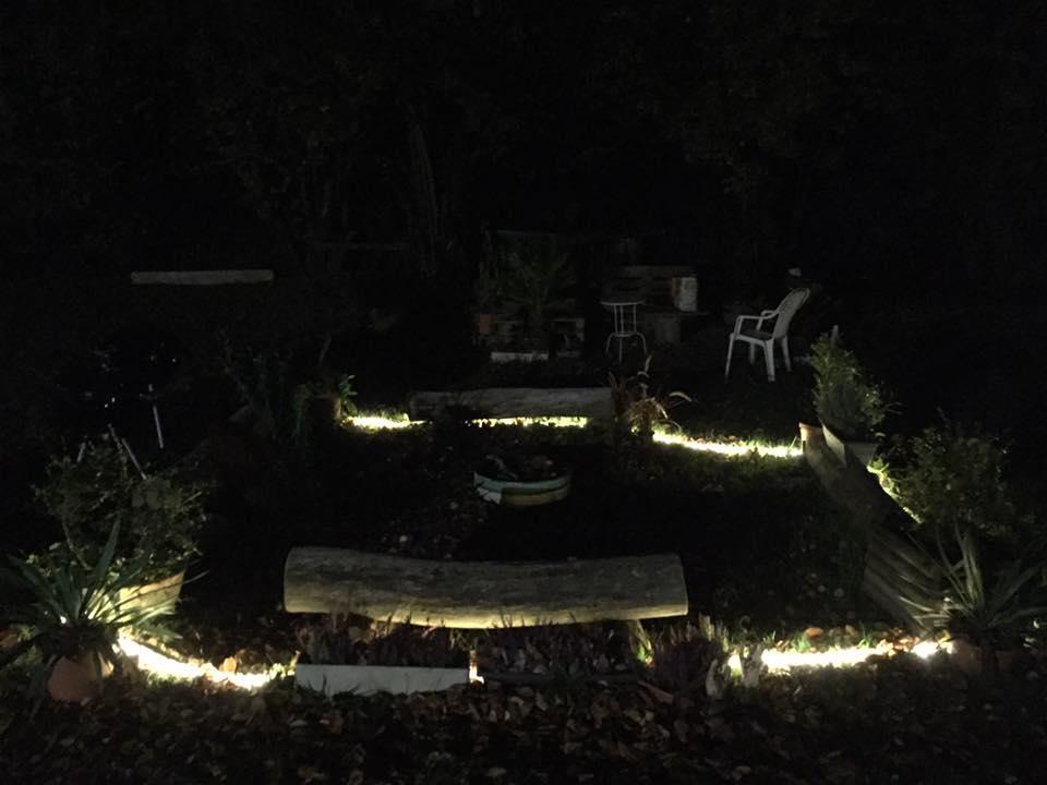 L'image contient peut-être: nuit, arbre et plein air
