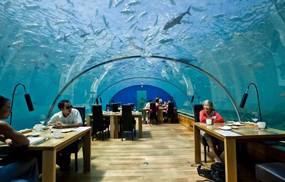 Résultat d'images pour Ithaa Undersea Restaurant – île de Rangalifinolhu, Maldives