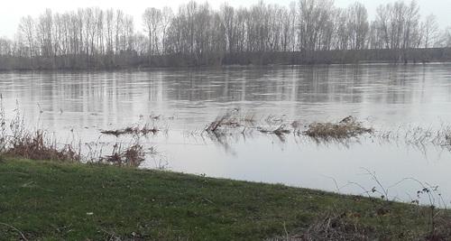 La Loire rive nord