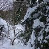 Passage au Col coté 1258