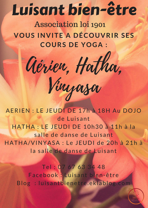 Yoga hatha vinyasa Luisant Chartres Agglo Eure et Loir 28