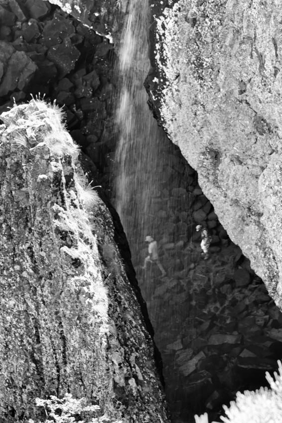 L'Aubrac Lozérien en noir et blanc