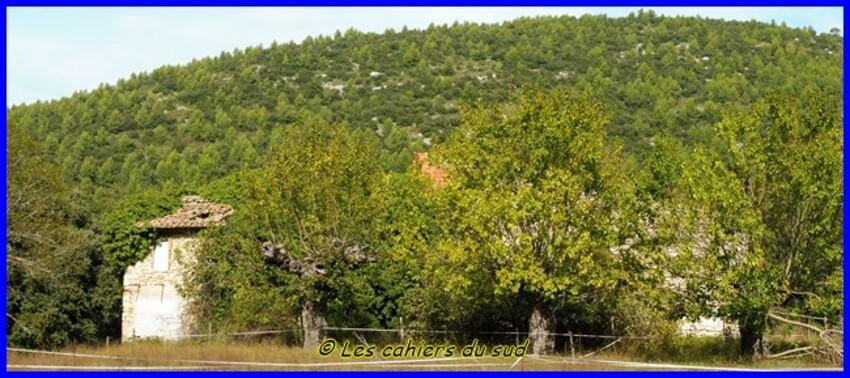 Sainte Baume, la Taurelle et l'Huveaune
