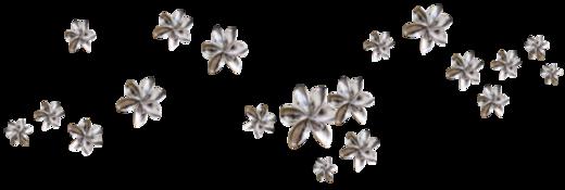 Farandole Fleurs