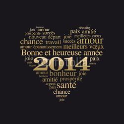 Belle et heureuse année 2014 à tous ... des bonnes résolutions peut-être???