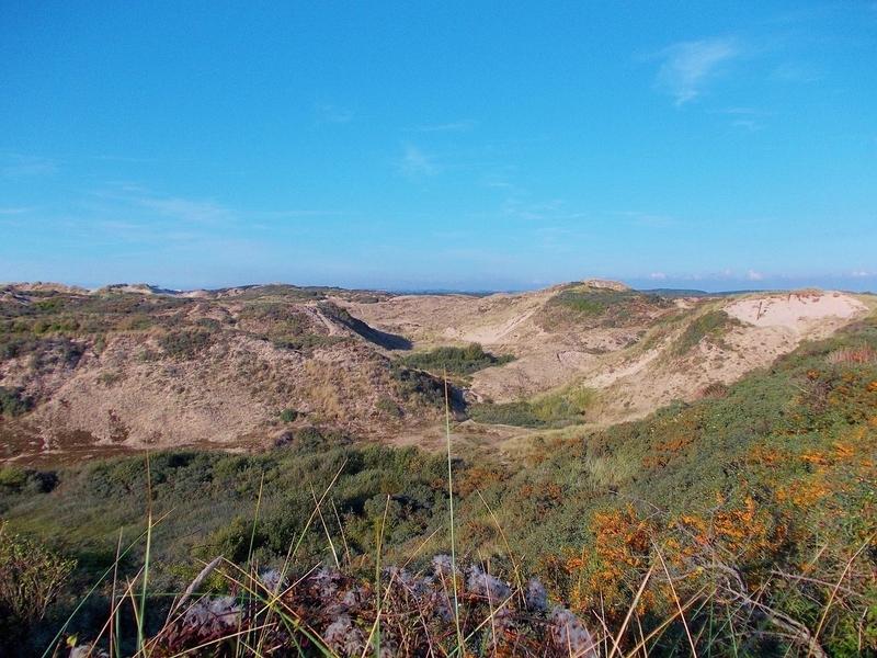 Octobre 2013 : la Bataille de San Pellegrino (Gason et les Sablonautes, épisode 4, voir rubrique 1)