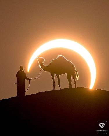 Le chameau et le croissant ...