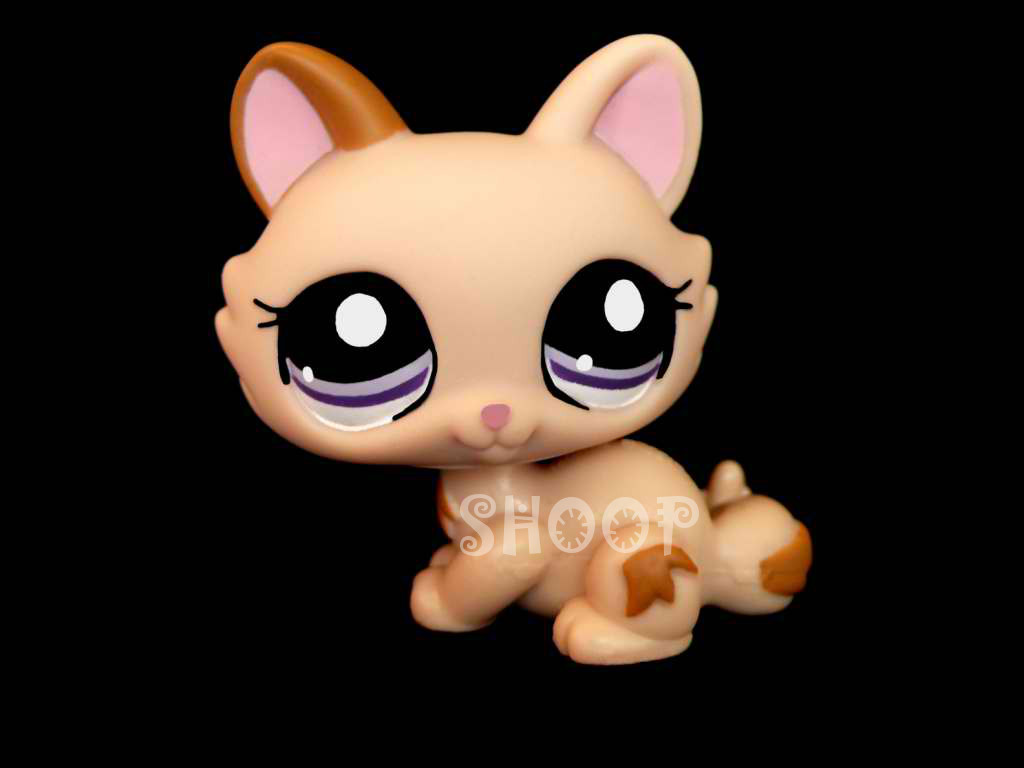 LPS 1444