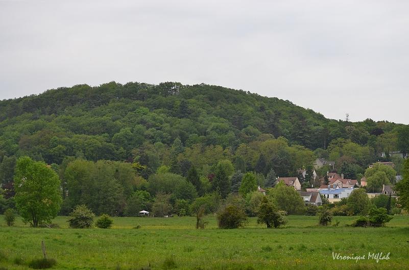 Parc naturel régional de la Vallée de Chevreuse