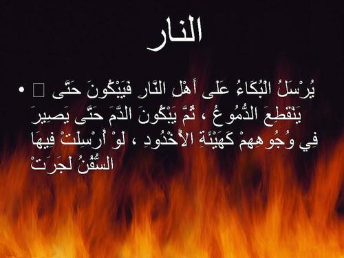 يوم تُقلّبُ وجوهُهُم في النار