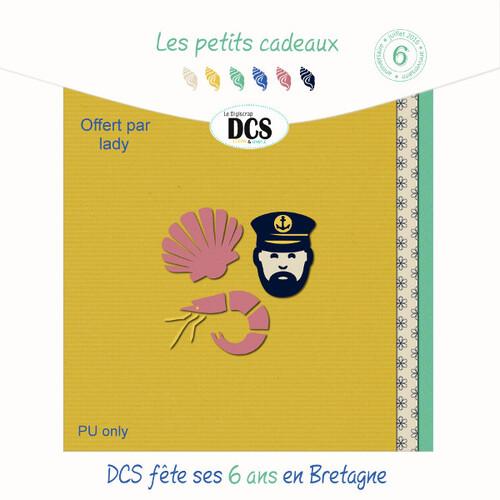 DCS fête ses 6 ans en Bretagne