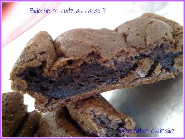Brioche au cacao ou bouchées cacaotées ...