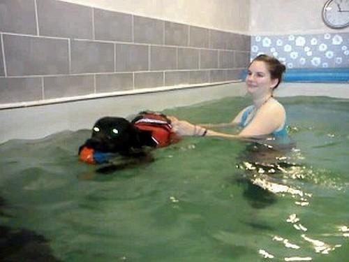 ermes-piscine3.jpg