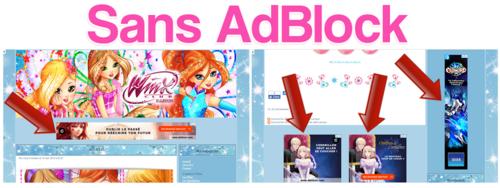 Comment ne pas être envahi de publicités pendant votre visite sur le site ?