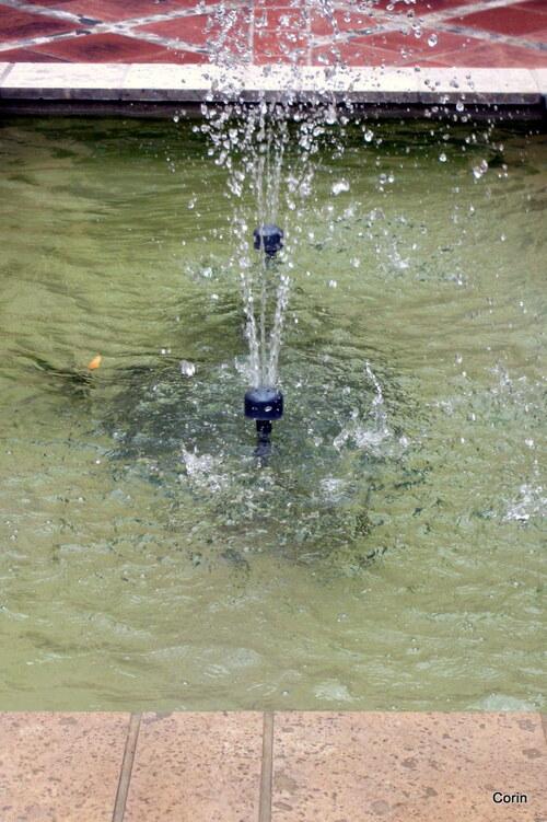 Les 2 jets d'eau !