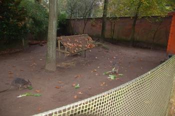 dierenpark amersfoort d50 2011 114