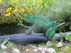 0A720 La grenouille qui marche
