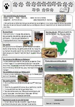 lecture doc AFRIQUE le crocodile