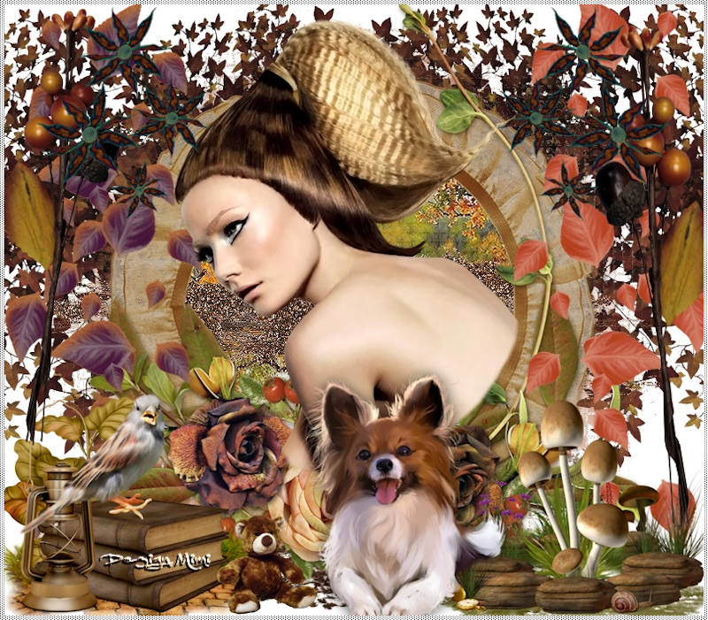 Variante L'automne 01 C.Laurette