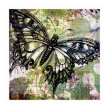 Ricki-Mountain-Les-papillons-sont-libres-Affiches