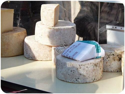 Bon fromage de brebis !