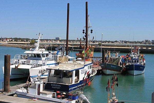 port de pêche royan-8-