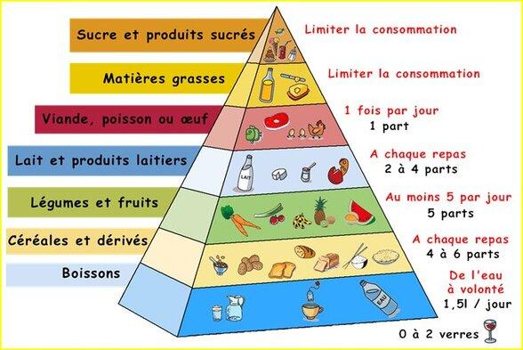 """Résultat de recherche d'images pour """"pyramide des aliments"""""""