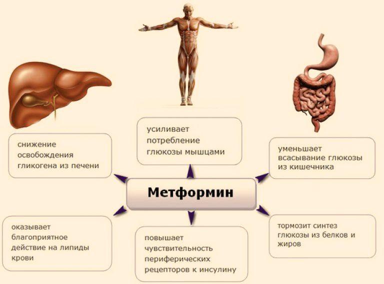Метформин при сахарном диабете отзывы