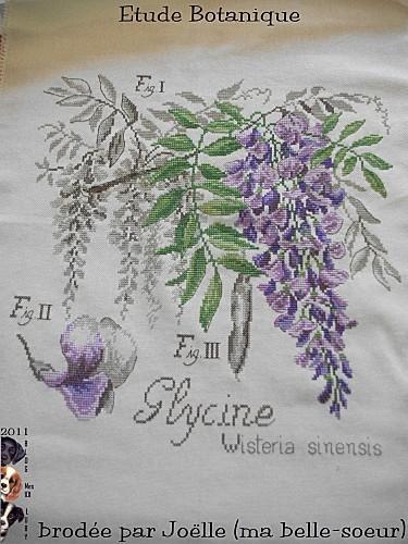 2011 etude botanique brodée Joelle (R) (2)