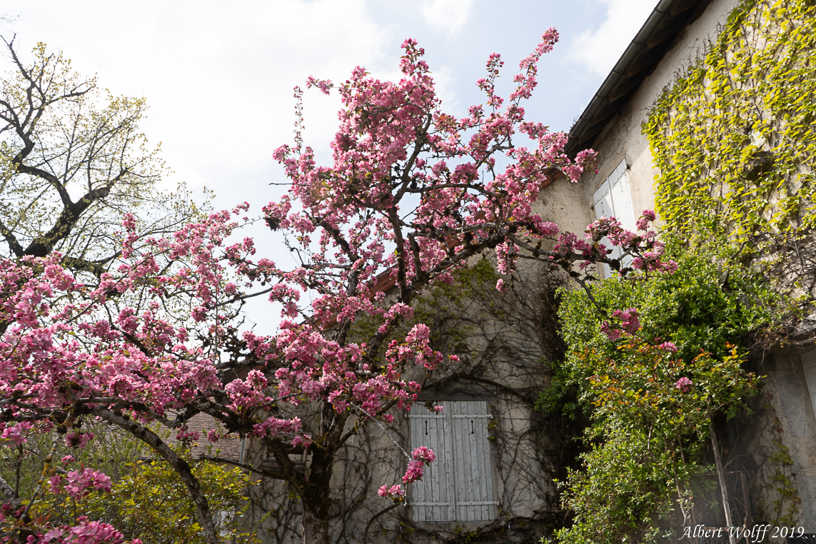 Château-Chalon : Sans paroles mais cent couleurs.