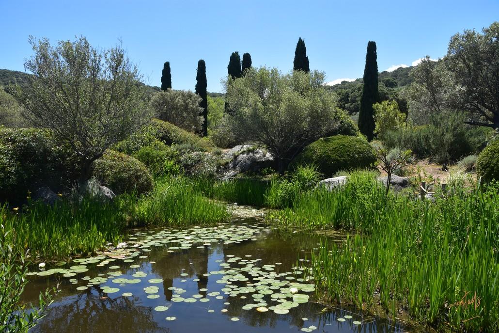 Parc de Saleccia - Monticello