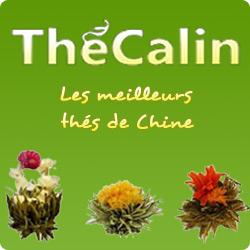 The Calin