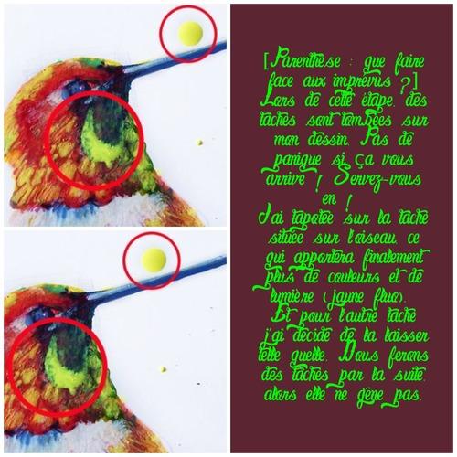 Dessin et peinture - vidéo 3288 : Comment apprendre à dessiner un oiseau coloré ? - technique mixte.