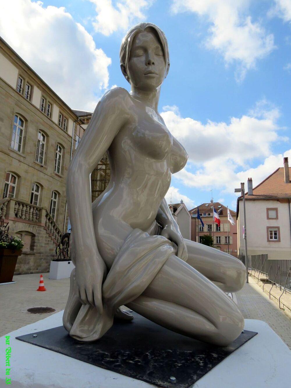 Sarrebourg en Moselle -2