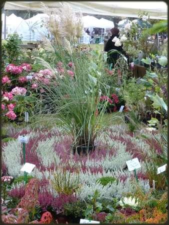 La foire aux plantes d'Aywiers