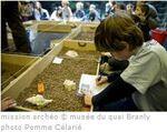 27 mars 2014 : Musée du Quai Branly pour les CM1/CM2 de Bures