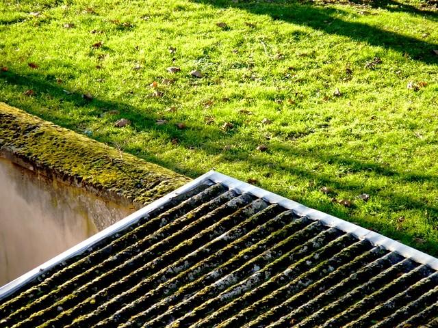 Un toit végétalisé à Metz 4 Marc de Metz 2012