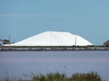 303-sel à aigues mortes