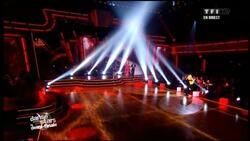 12 novembre 2011 / DANSE AVEC LES STARS