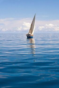 La mer en acrostiche par Maureen et Vincent