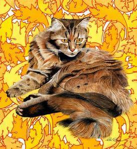 guard-cat.jpg