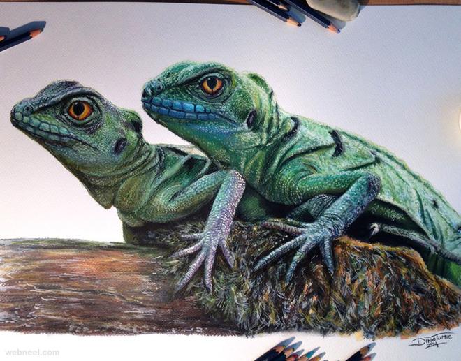 dragon animal drawing