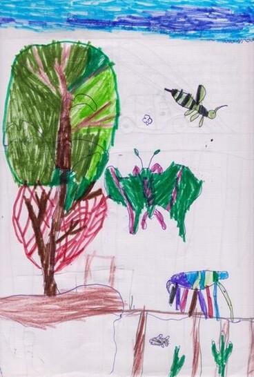 Le monde des insectes (épisode 1)