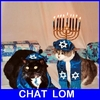 chat lom.jpg