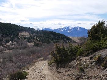 En montant aux Plans. Au fond, la Tossa d'Alp et la station de la Molina