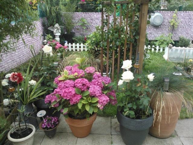 Beau petit jardin marynord - Beau petit jardin ...
