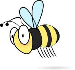 Des abeilles de plus en plus rares  : un constat inquiétant
